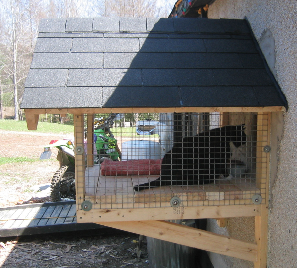 shingled outdoor cat pen