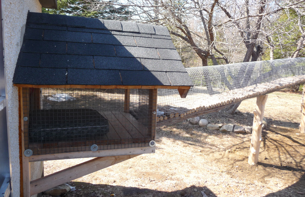 outdoor cat tunnel to pen